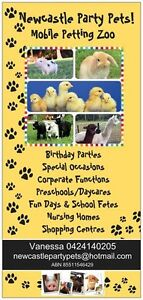 MOBILE PETTING ZOO - NEWCASTLE PARTY PETS Thornton Maitland Area Preview