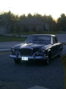 62 stude for sale