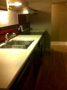 Large 1 bedroom - Renovated