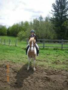 Offering Riding lessons