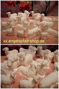20 x SCHAF GROß + Schafe Figuren für 17cm Krippenfiguren        krippe