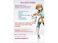 hardworking punctual cleaner available & mobile ironing service