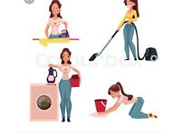 Ironing and cleaning service BEST PRICES