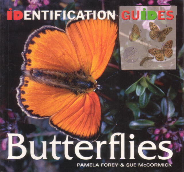 BUTTERFLY - BUTTERFLIES Pamela Forey & Sue McCormick 384 Pages **NEW COPY**