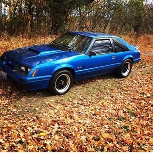 Must See - Incredible 1986 Ford Mustang 5.0 LX - 5 speed - Blue