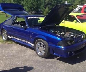 Mustang | Kijiji: Free Classifieds in Newfoundland. Find a ...