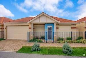 Stunning Family House - Carlisle Location Carlisle Victoria Park Area Preview