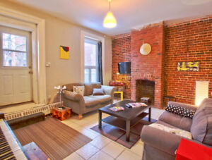 2 bedrooms, furnished, downtown, Metro Guy large garden