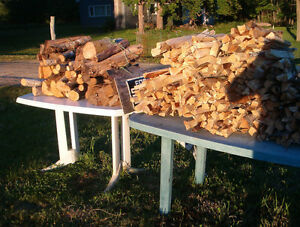 Camp wood & Kindling DRY! For Sale!