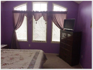 Furnished Room Available For Rent With Meal