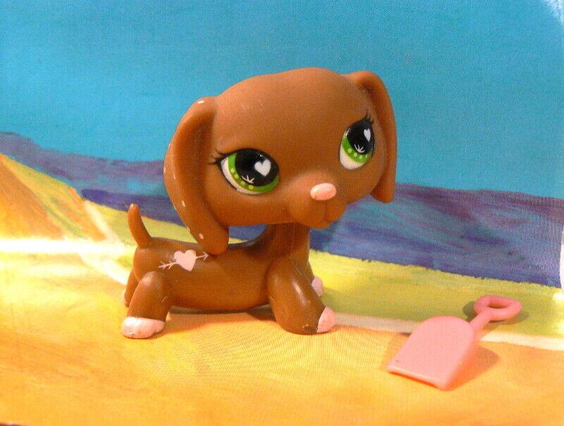 Authentic littlest petshop lps  # 556 teckel dog dachshund