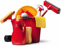 HOUSEKEEPER and PROFESSIONAL CLEAN HOME! JUST $20/hour!