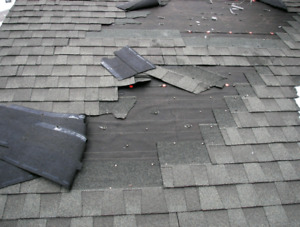 Free Roof Temporary Repair When You Book Your Roof Replacement