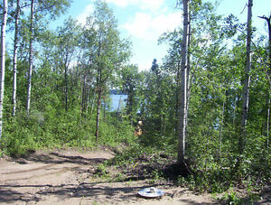BUILDING LOT FOR SALE EMMA LAKE (CARWIN PARK)