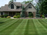 Grass cutting/ Pet waste cleaning