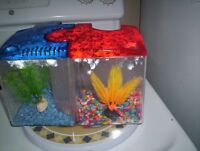 2 used betta fish tanks and accessories