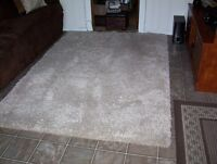 Beige Shag Carpet--5 ft. 3 in.  x 7 ft. 5 in.