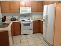 Room for Tent in Brooklin - Mature Female only