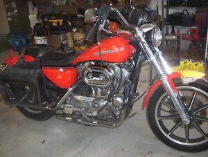 1200 Harley sportster