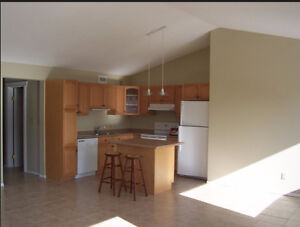 New Price Very spacious,clean and modern, open concept, 2BR apt