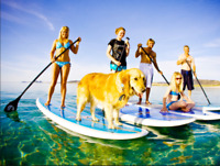 SUP  INSTRUCTOR WANTED