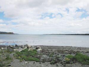 16 Ryans Rd - Spaniards Bay, NL - MLS# 1133580 St. John's Newfoundland image 2