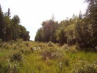 Remote bush quarter north of Athabasca