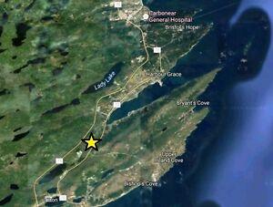 Gullys Path LOTS - Harbour Grace, NL - MLS# 1132066 St. John's Newfoundland image 4