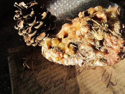 Pine Resin  Raw Pitch Tar 1 Oz