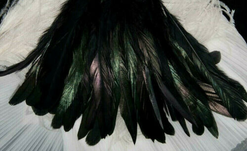 """25 Pcs.B Grade - 6-8"""" - Dyed Black Rooster Coque Tail Feathers"""