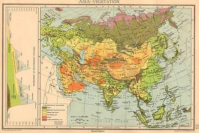 Asia - Vegetation Original Antique Map 1940