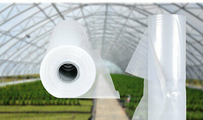 10m x 8m Polly Tunnel Clear Polythene Greenhouse Sheet Raised Bed PVC material  for sale  Newport