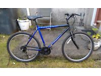Swap My Mountain Bike for Your Folding Bike or Guitar