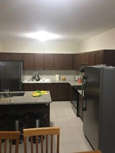 Whole brand new  kitchen cabinets and counter tops for sale