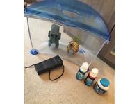 Starter Fish Tank for Freshwater Fish