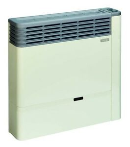 Direct Vent Propane Heater