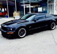 2005 Ford Mustang Gt 500 clone