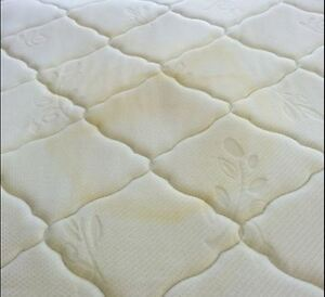 Professional Cleaning Carpet,Couch & Mattress - JnC Services Sarnia Sarnia Area image 5