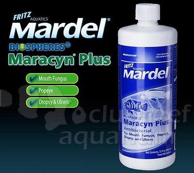 Maracyn Plus Fish Tail/Fin/Mouth Antibiotic Fungus/Ulcer Medication 32oz