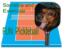Pickleball lessons