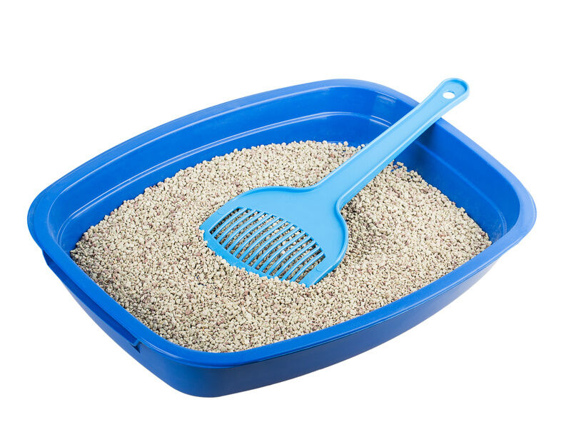 Accessories For Keeping Your Cat Litter Tray Clean And