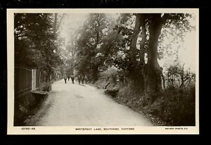 London-Lewisham-CATFORD-Whitefoot-Lane-Southend-early-Rotary-RP-PPC-W-G-Carter