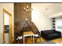 Stunning Refurbished 1 Bedroom Flat with Private Terrace just 5min from Camden Town station, 127K