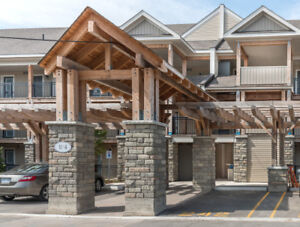 Collingwood Condo Ski Season (Monthly) Rental  Sleeps 7