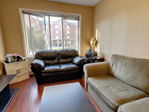 One bdrm available in three bdrm apt; Walk to UW and Laurier
