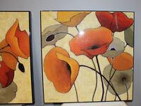 Poppy Pictures