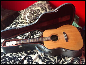 Acoustic Martin Guitare with case