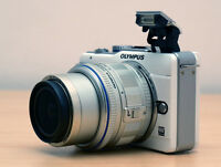 Olympus E-PL1 (priced for quick sale)