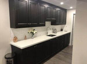 SPRING SPECIAL ON KITCHEN CABINETS!!!! !