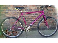 21 inch Townsend Phobos large bike MTB adults mountain bicycle